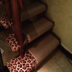 Far-out fabulous: the basement steps.